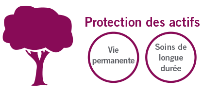 Asset protection_circle_FR